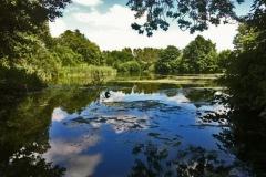 Hothfield - Scenic