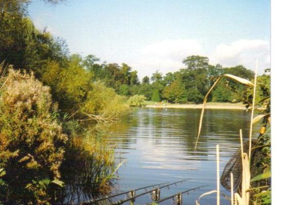 Mote Park - Scenic