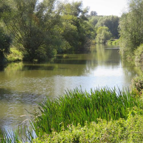 Medway-at-Foxbury